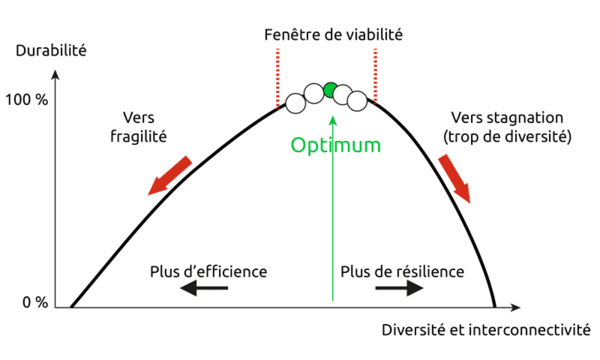 coopererentreefficienceetresilience2_image_bf_imageconcept_coopererentreefficienceetresilience_1sur1_fr.png