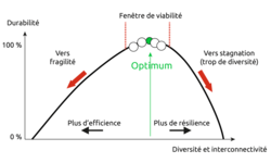 bf_imageconcept_coopererentreefficienceetresilience_1sur1_fr.png