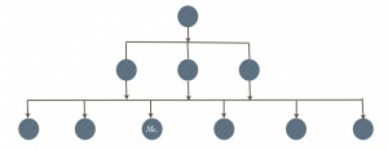 systeme hierarchique